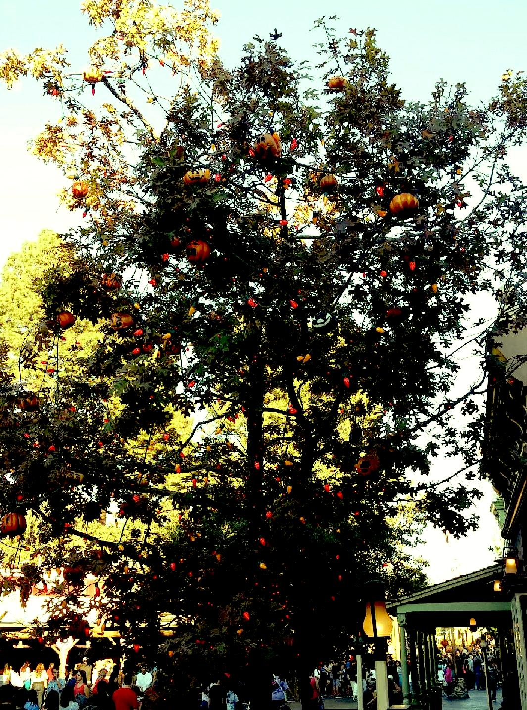 Bye Bye Halloween Tree