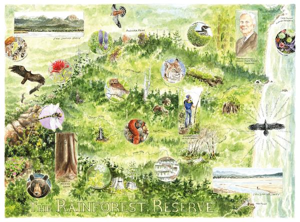 Rainforest Reserve campaign