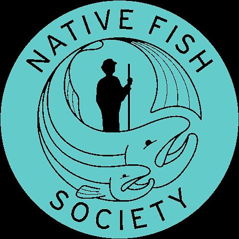 NFS_Logo_Solid_Turq325c_3000.png