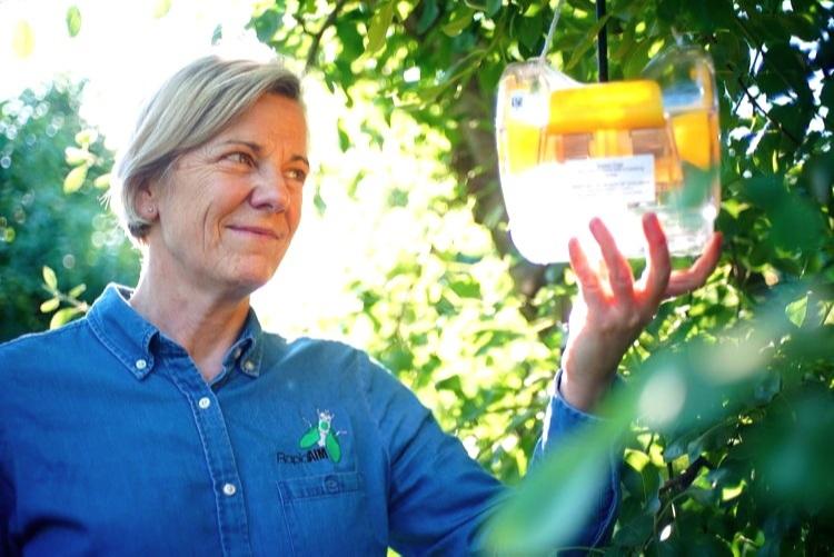 RapidAIM CEO | Dr Nancy Schellhorn in field deployment of the new smart traps.