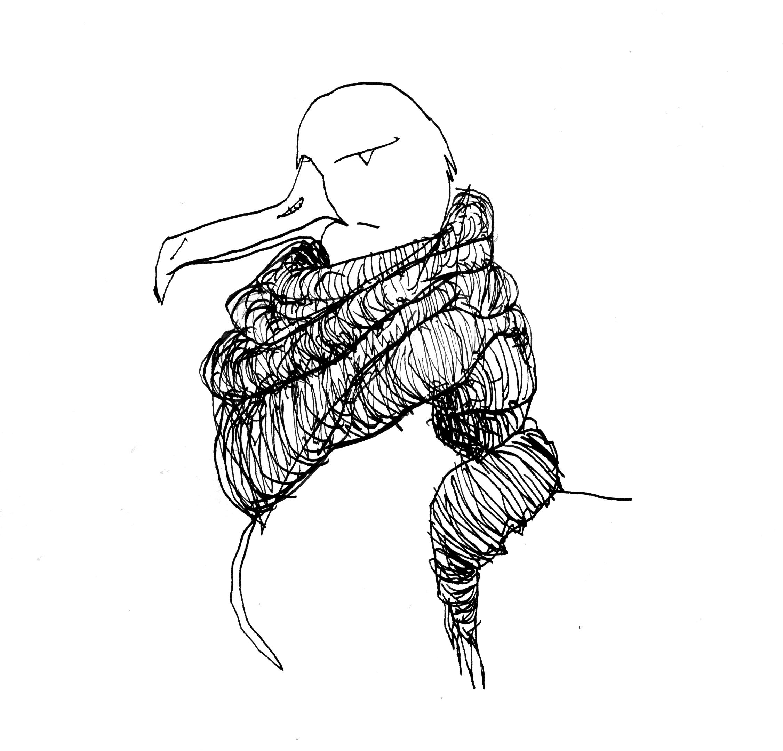 oiseau 5.jpg