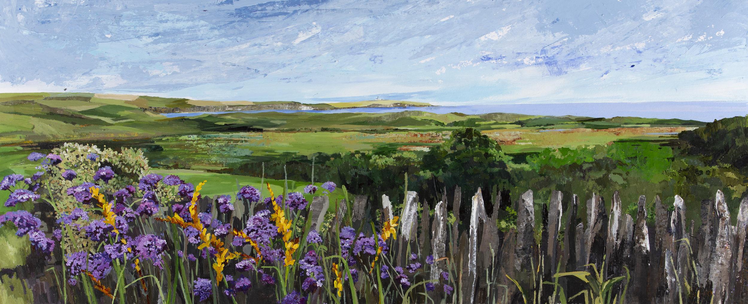 Castlefreke Farmyard View (1).jpg