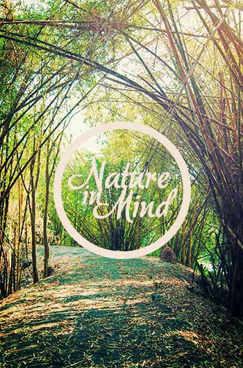 nature-in-mind-พิษณุโลก