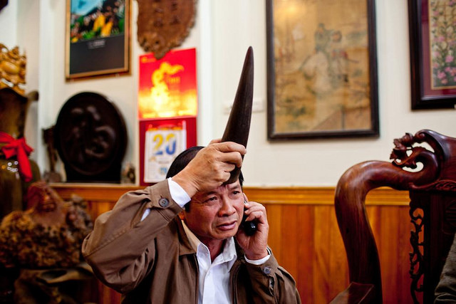 Demand for rhino horns in Vietnam is growing strongly in recent years. This demand comes from the notion that rhino horns are a special drug, particularly a good aphrodisiac for men.