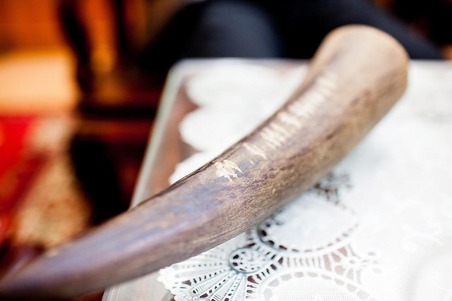 Most rhino horns in Vietnam are originated from poaching activities in South Africa. They are smuggled by air to Vietnam. Many rhino horn trafficking cases have been detected at the airports.