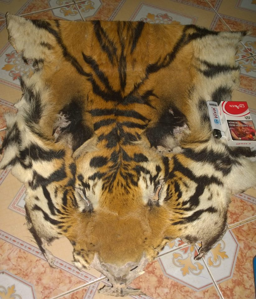 Tiger skin for sale on Facebook