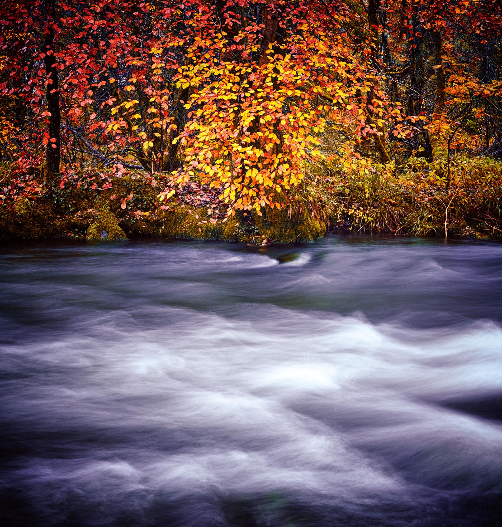 201510_Lake District_Stuart McMillan Photography_002.jpg