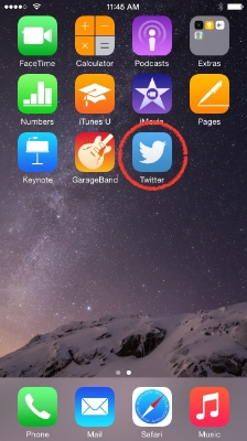 Go to the home screen and launch Twitter