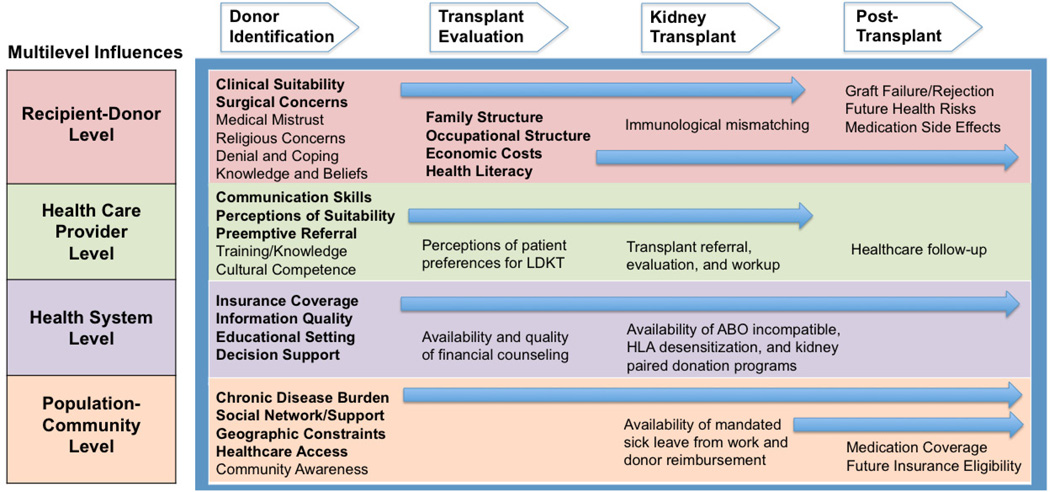 Multilevel Influences Contributing to Barriers to Living Kidney Donation for Racial-Ethnic Minorities at Each Stage of the LDKT Process    Figure from    Purnell et al.    Adv in CKD, 2012