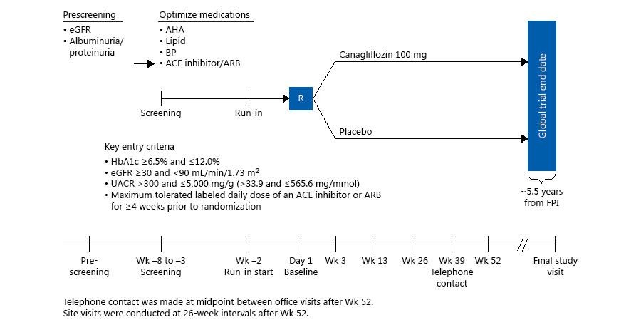 Figure 2 from    Jardine MJ et al, American Journal of Nephrology, 2017