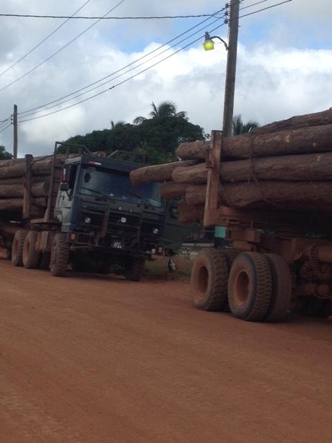 hauling out logs.JPG