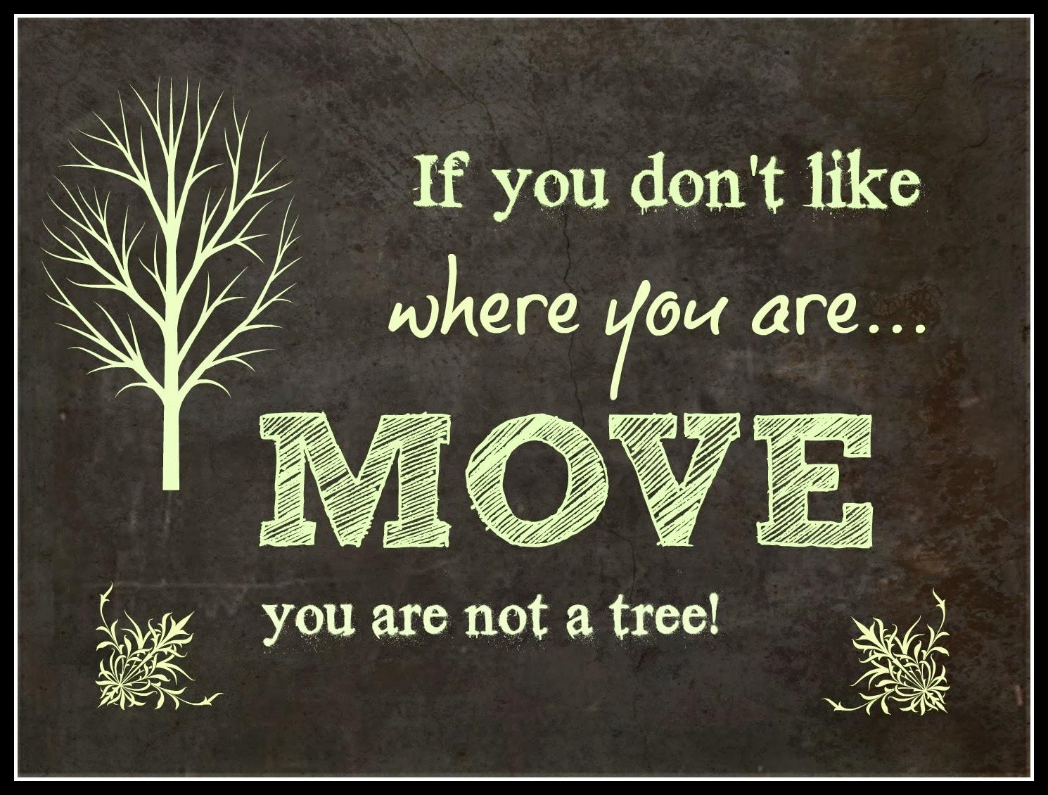 shauns_moving_blog.jpg