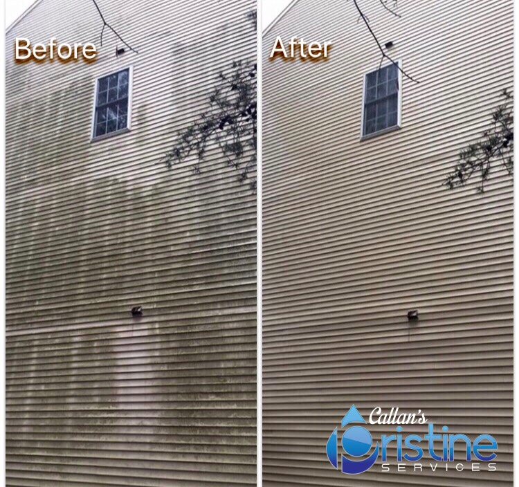 Mold removal with soft wash technique