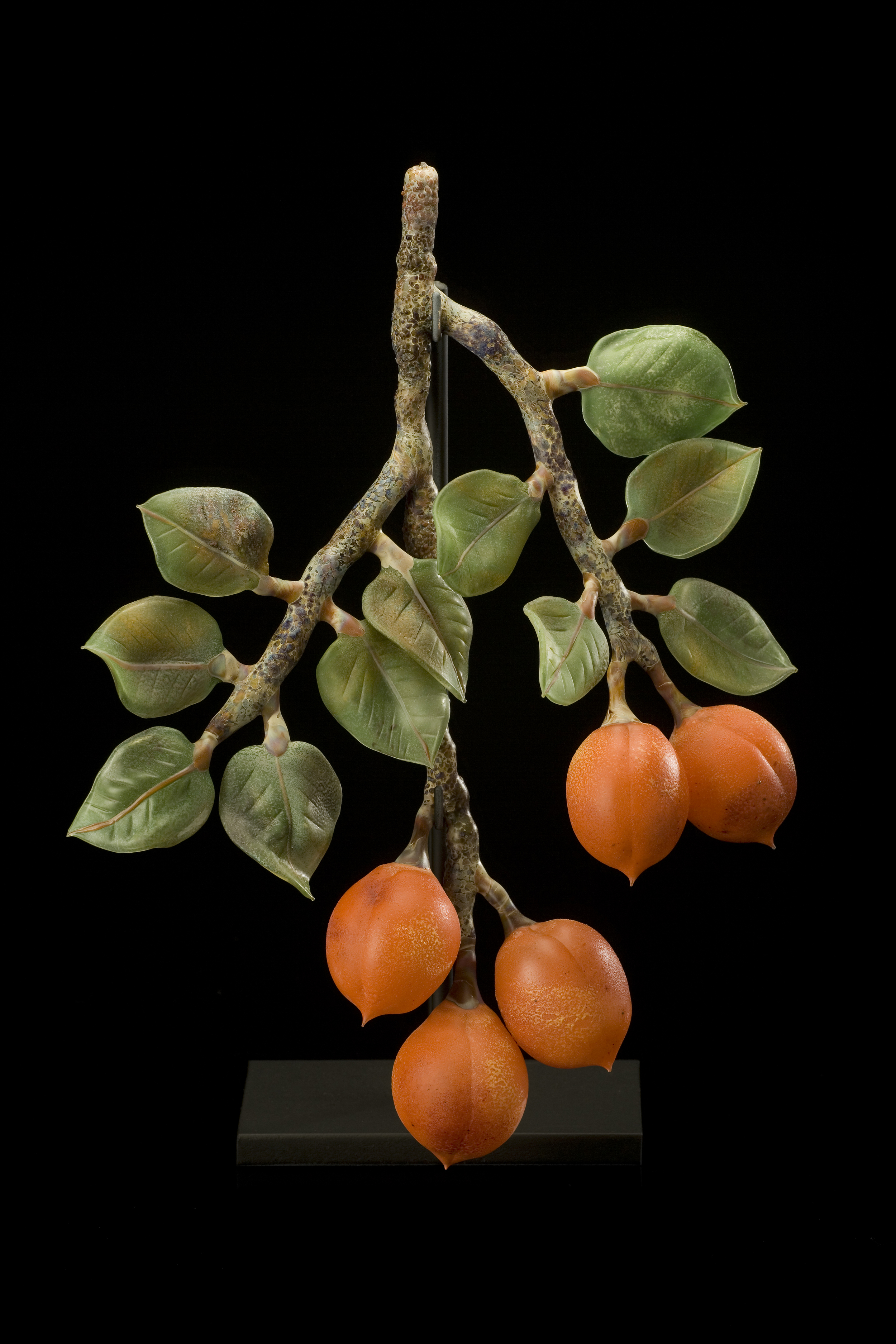 Five Apricots