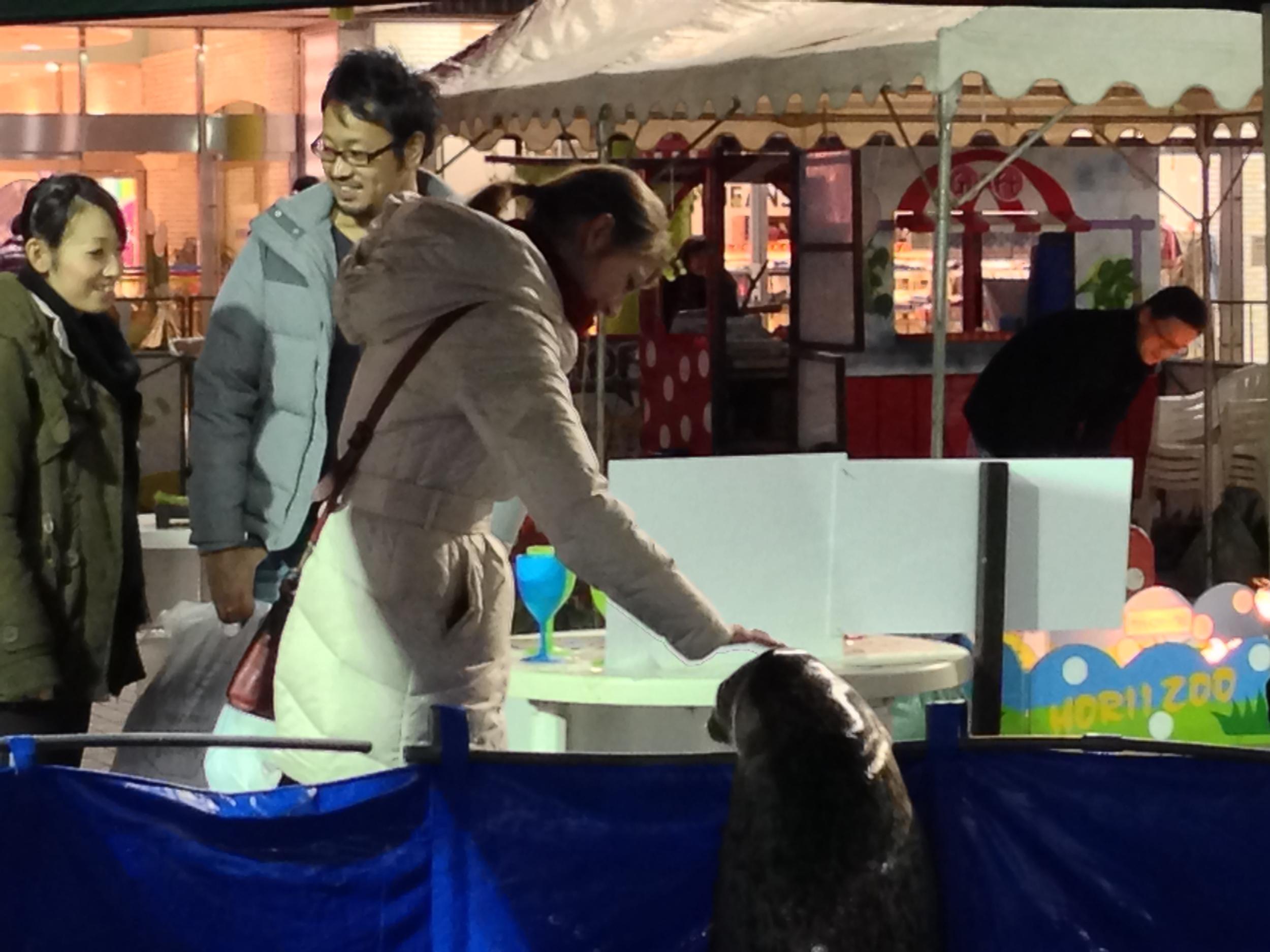 Petting a seal on Odaiba
