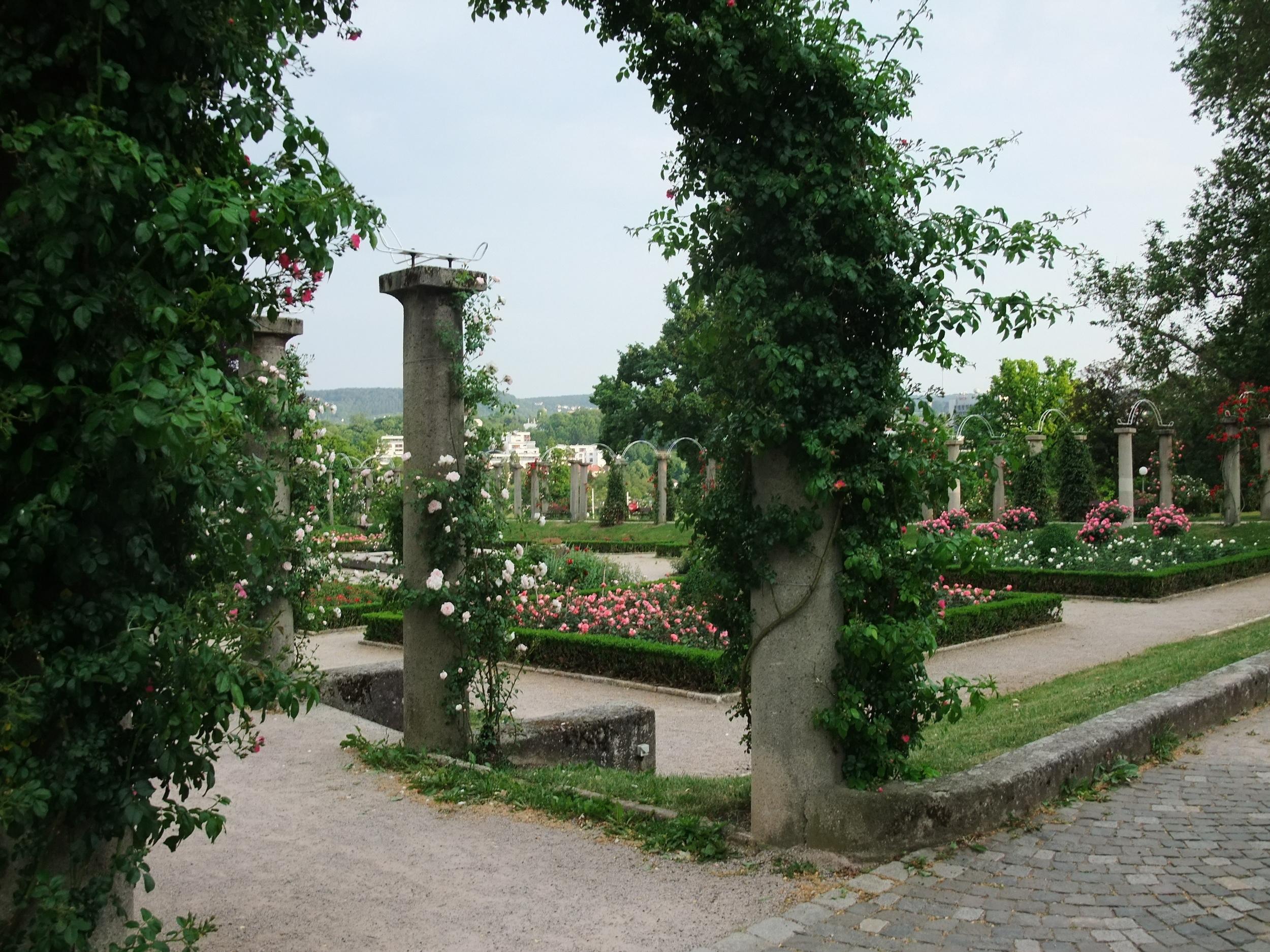 The rose garden at Rosenstein Palace