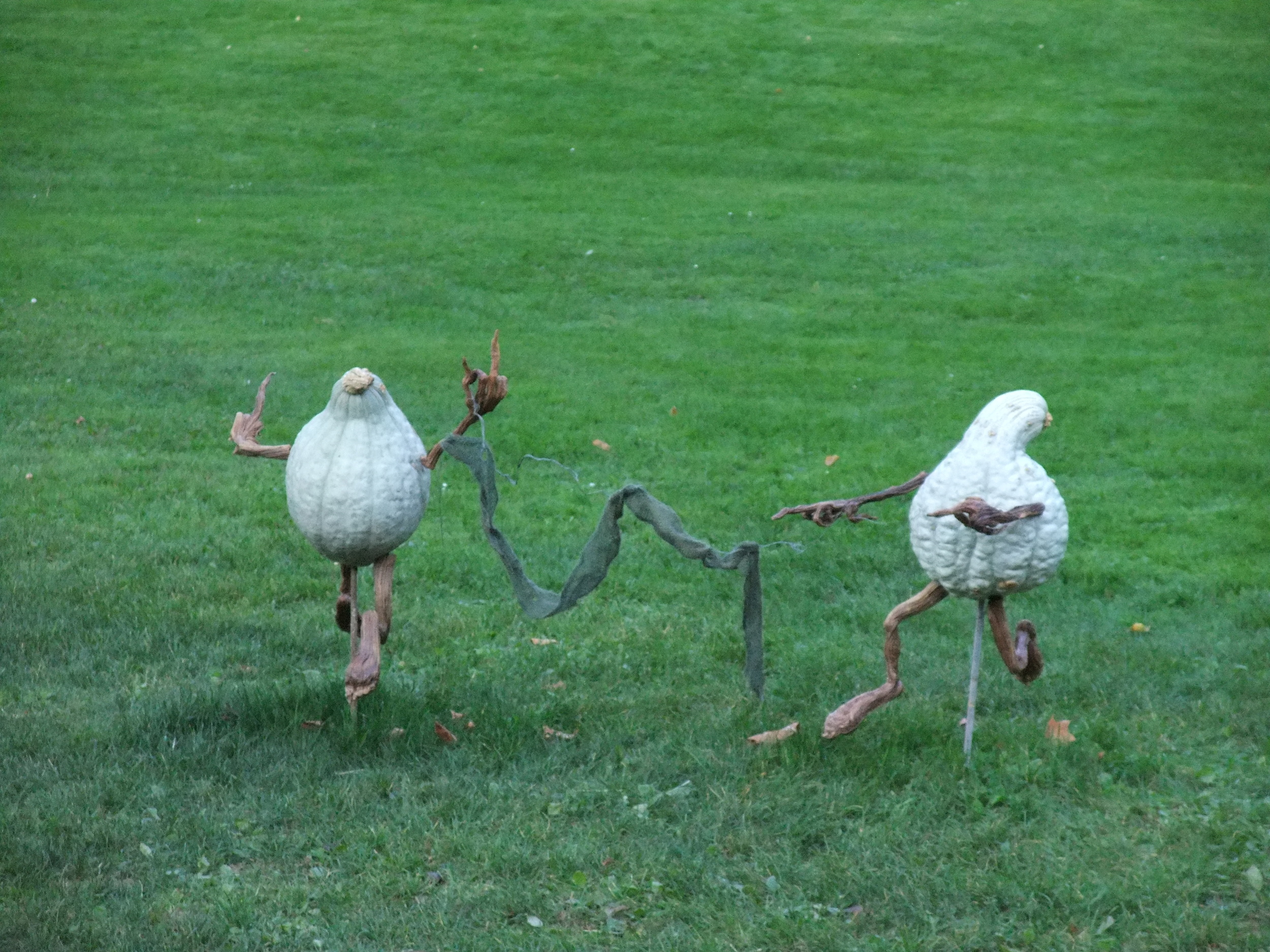Gourds playing games