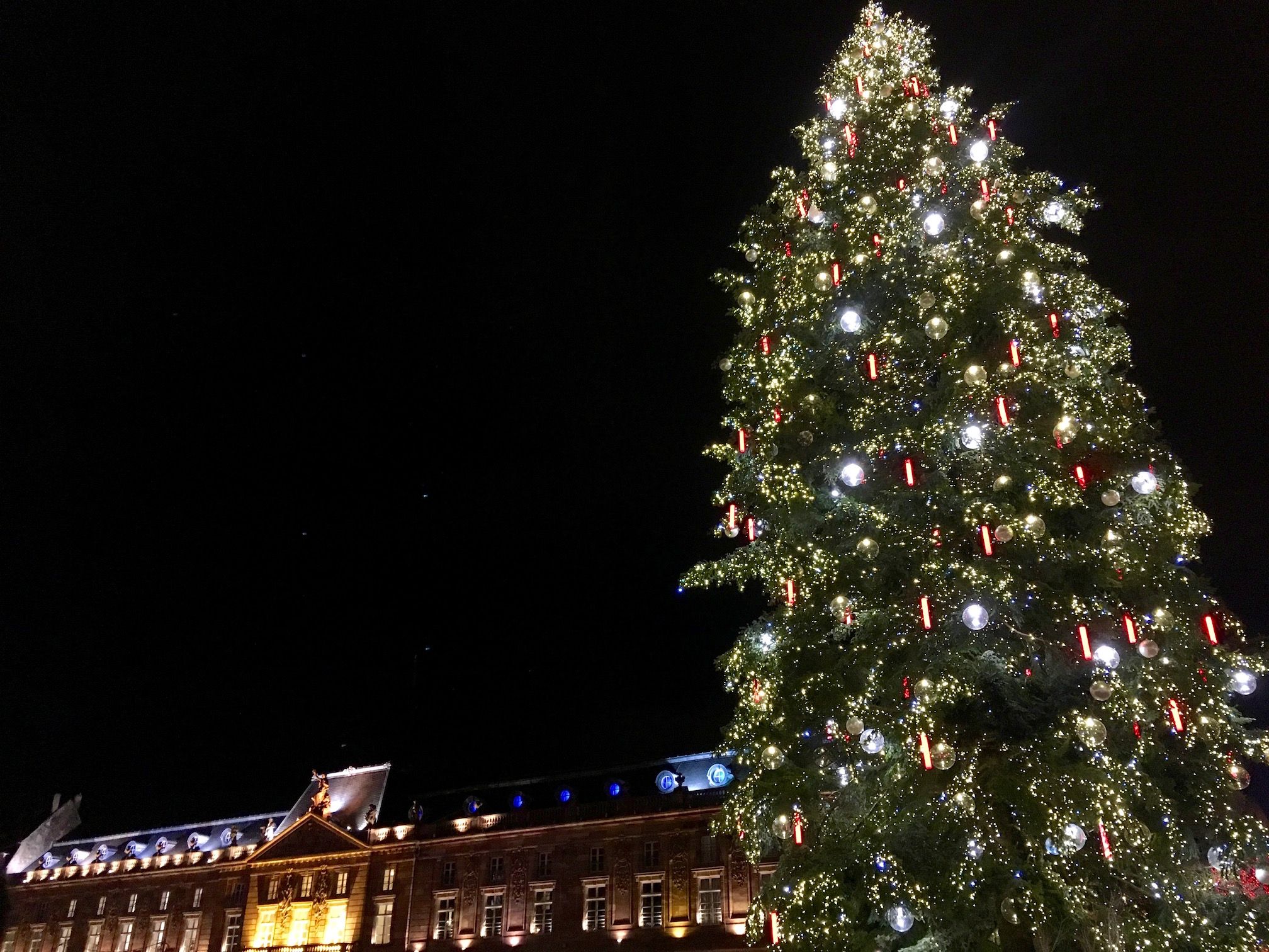 The grand Christmas tree at Place Kléber