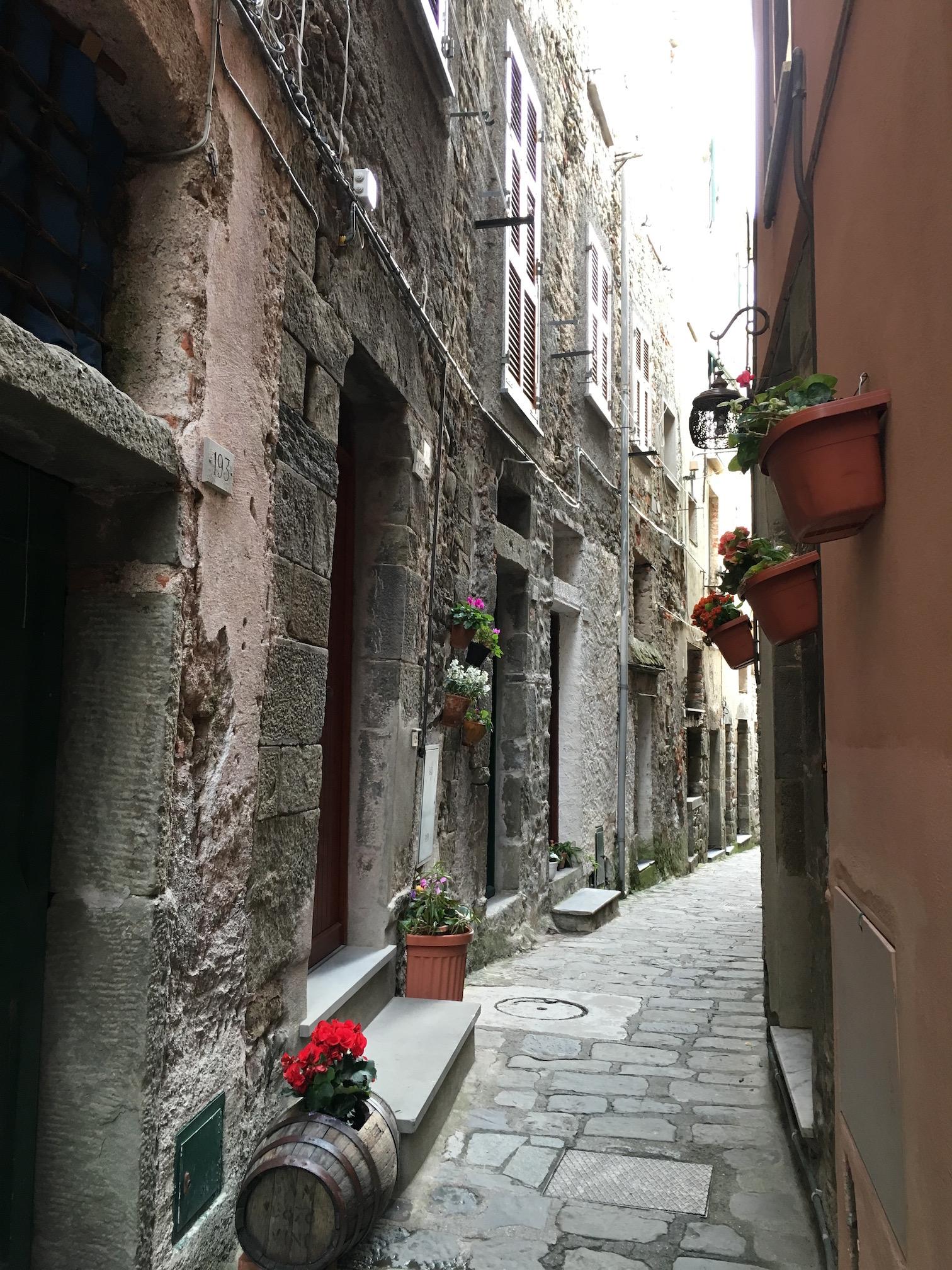 The main road in Corniglia