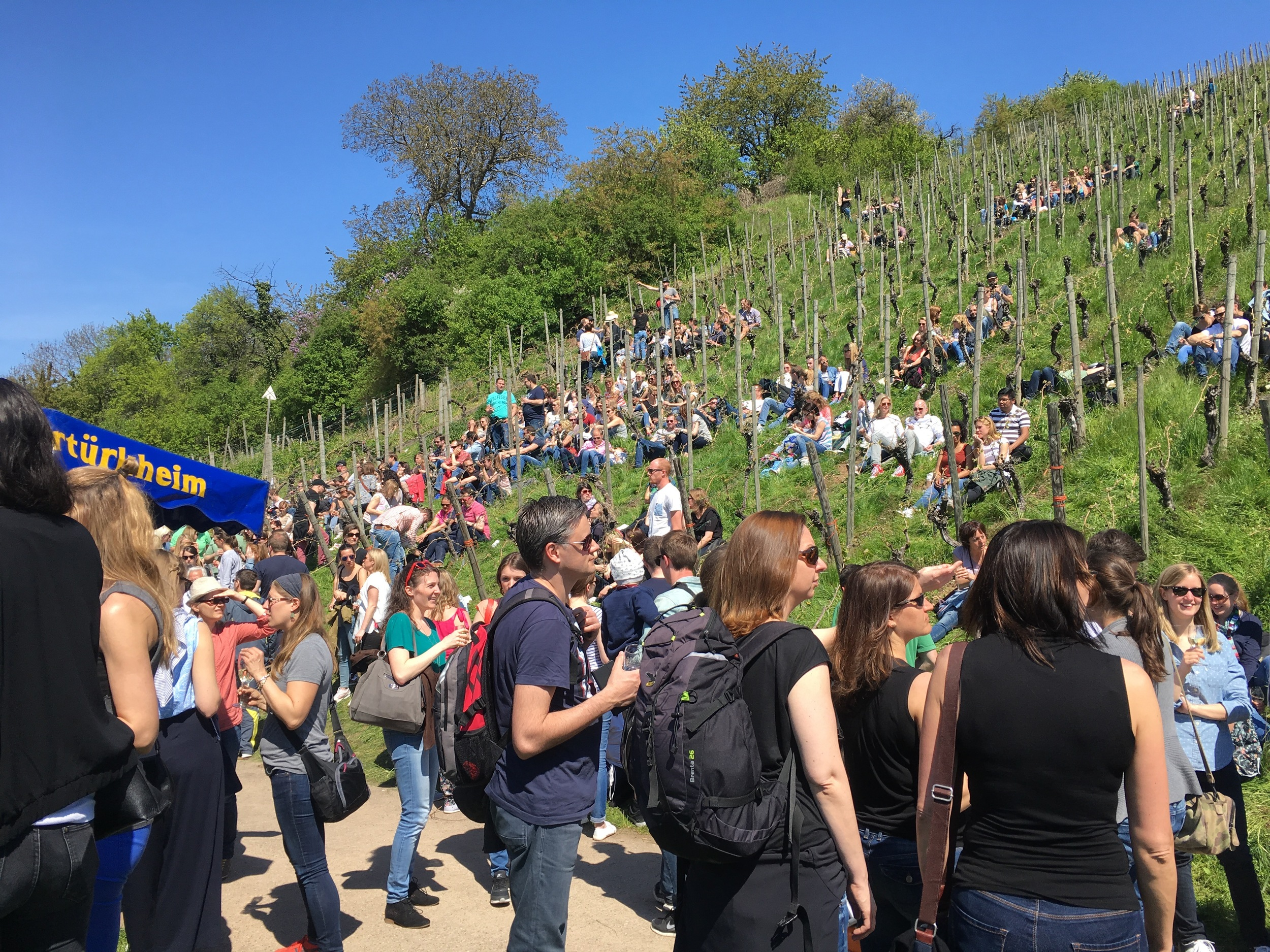 The crowds along the wine walk