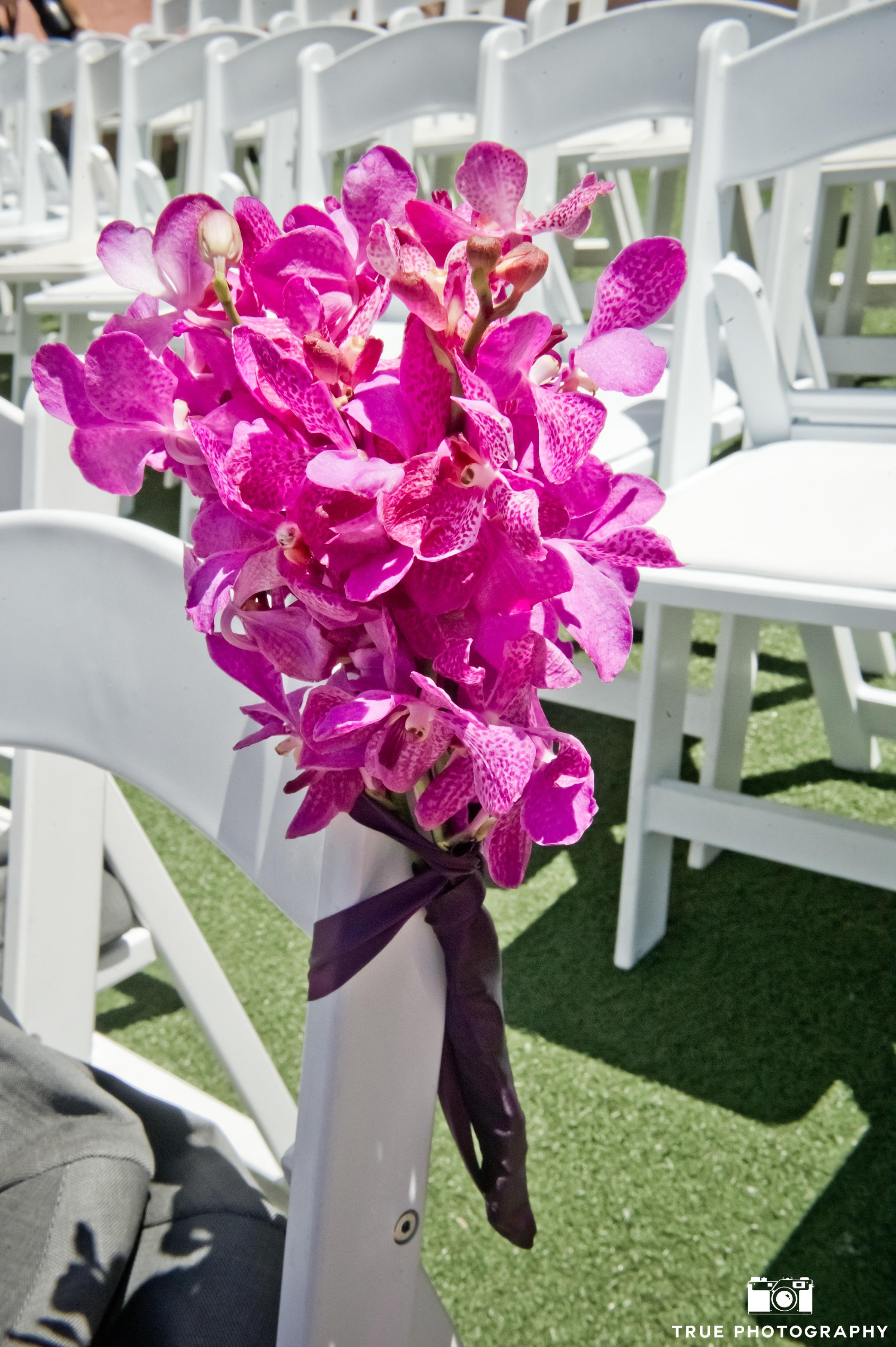 Fushia Orchids.jpg