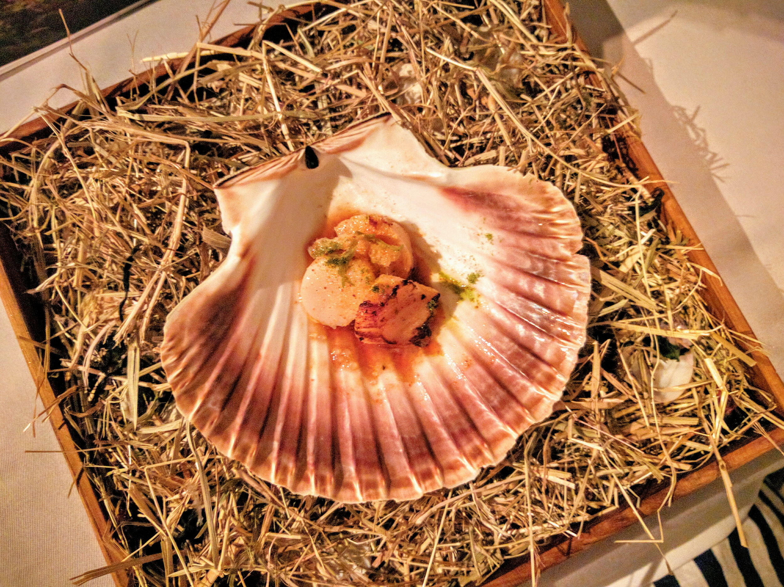 Scallop in it's own shell served with dried roe, fir-tree, finger lime and dashi