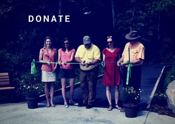 Donate (4).jpg