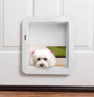dog door.png