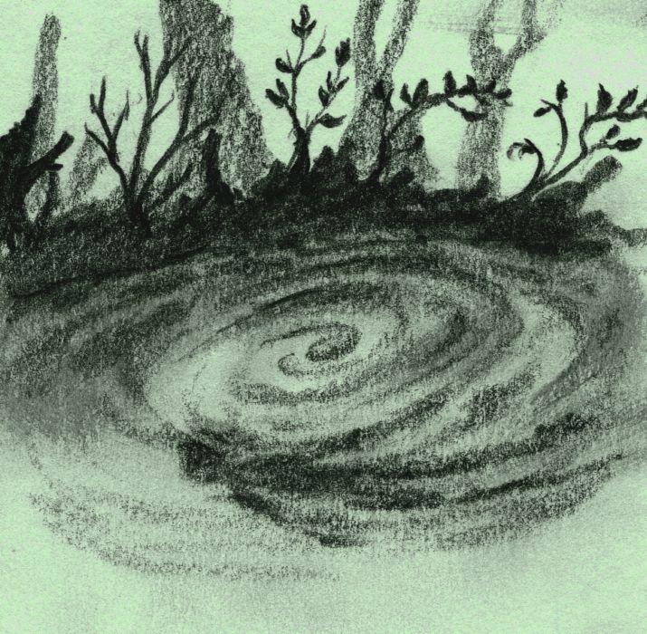 Ali Shaw's Nixie in the pond