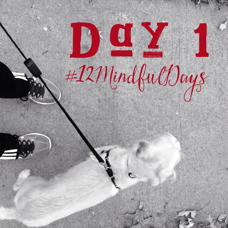 12mindfuldays-day1.jpg