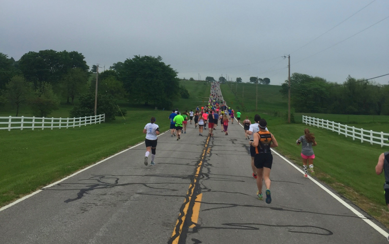 Running with the Cows 2015
