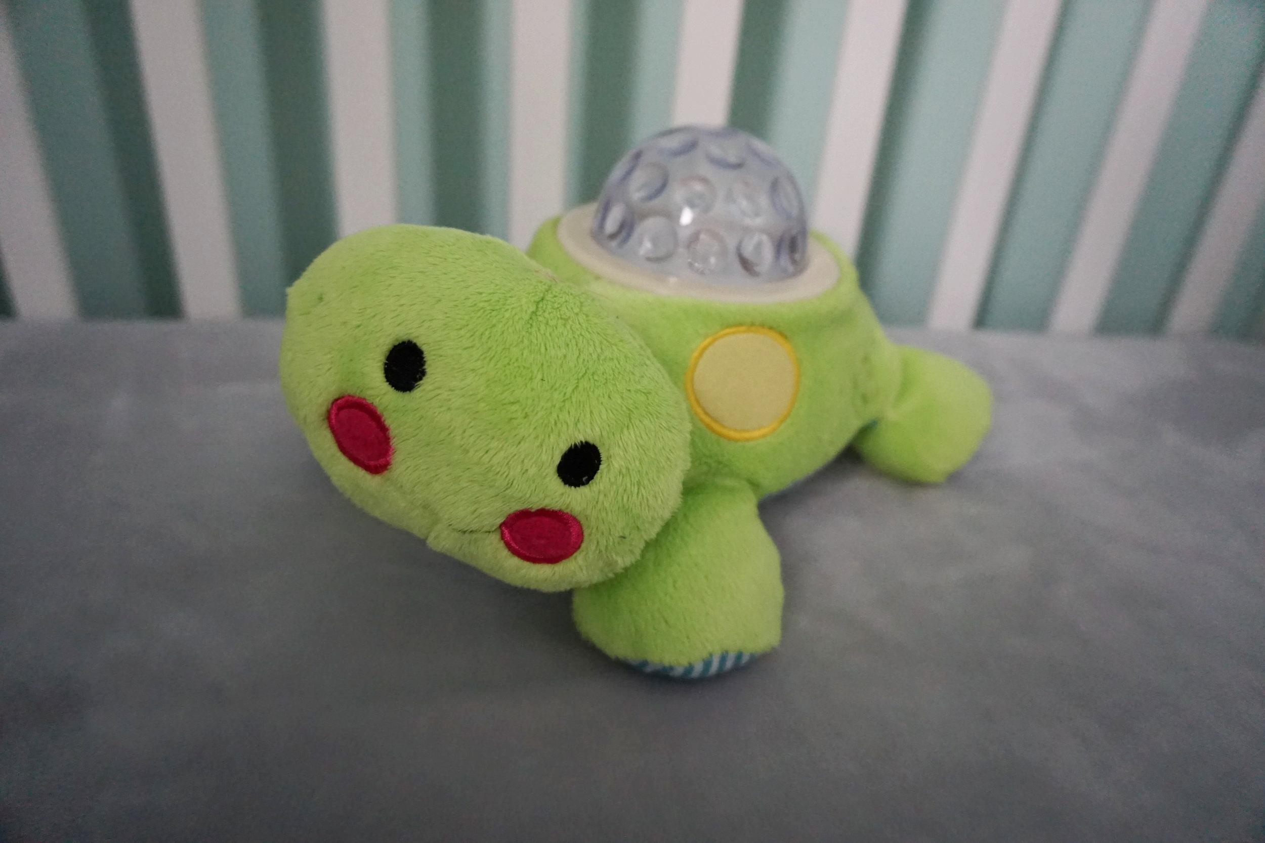 Magic turtle