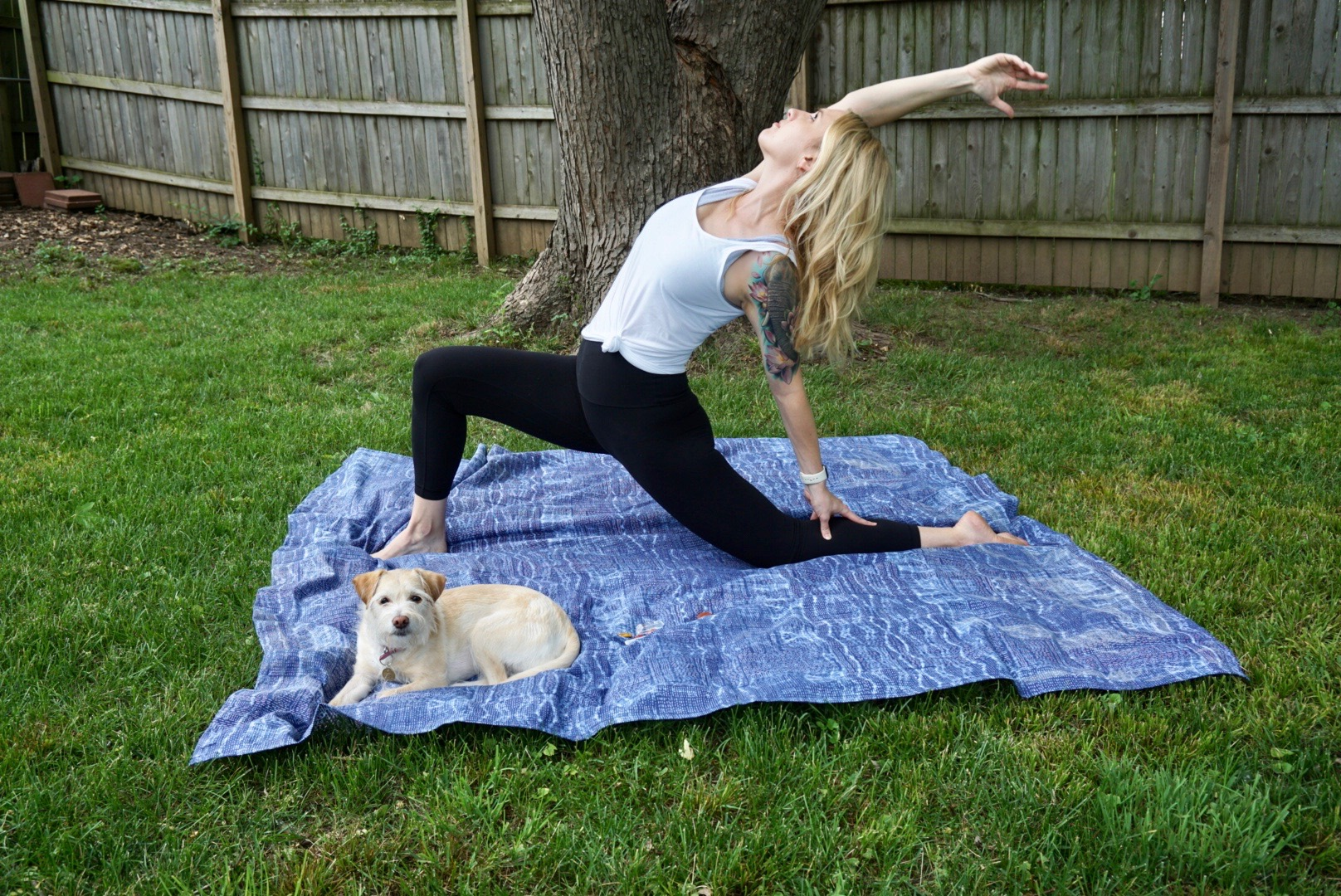 Lucy has nothing to do with sacral chakra healing but she sure loves yoga.