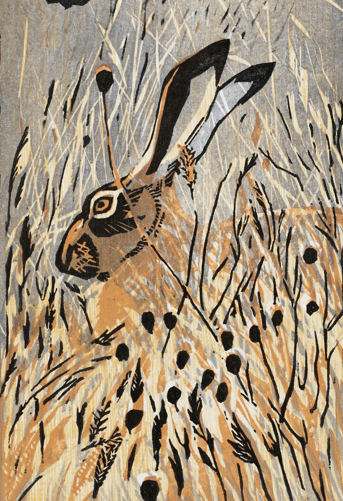 Hare & Pigeons.jpg