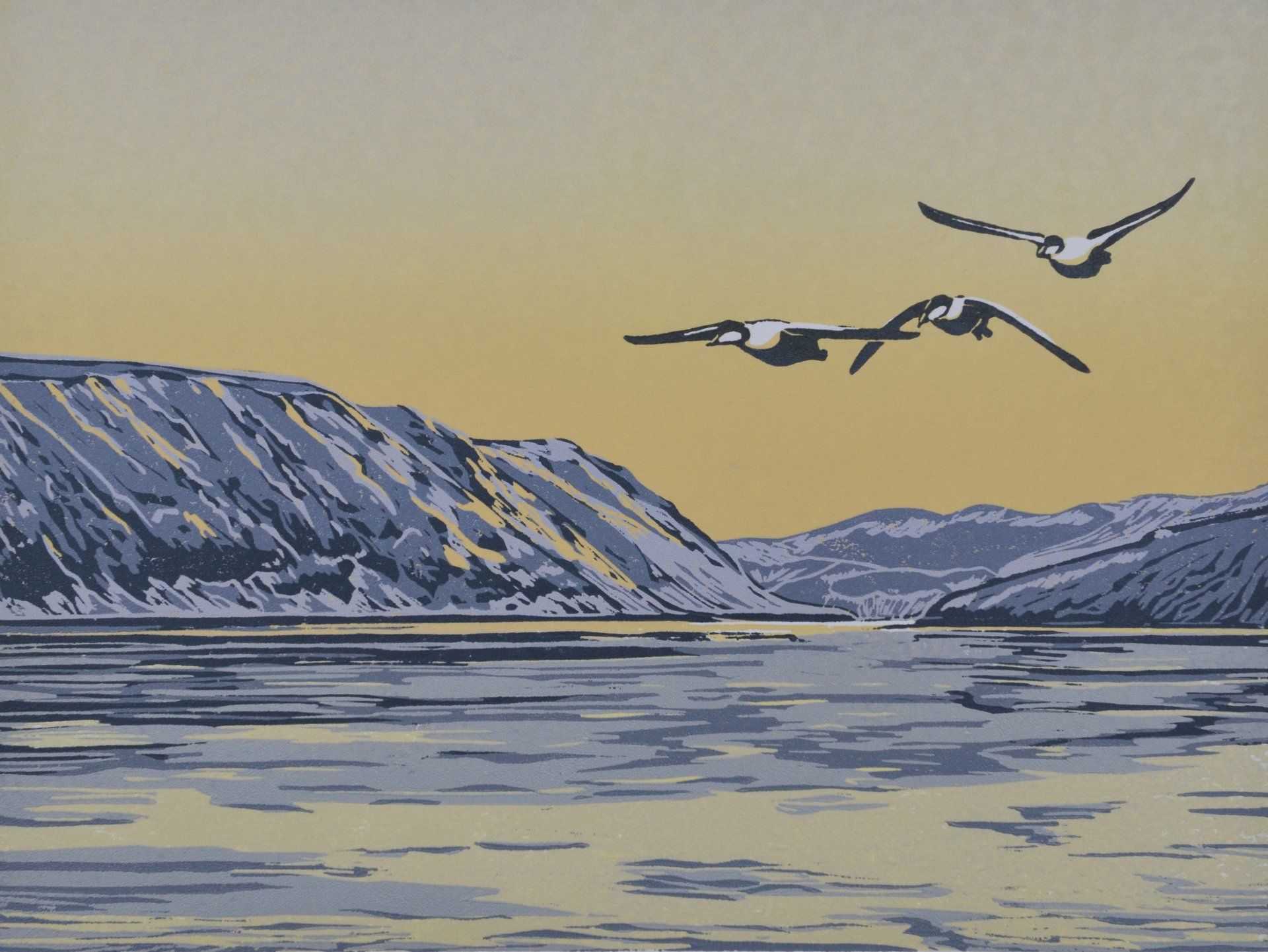 Eiders+Wing+North+1.jpg