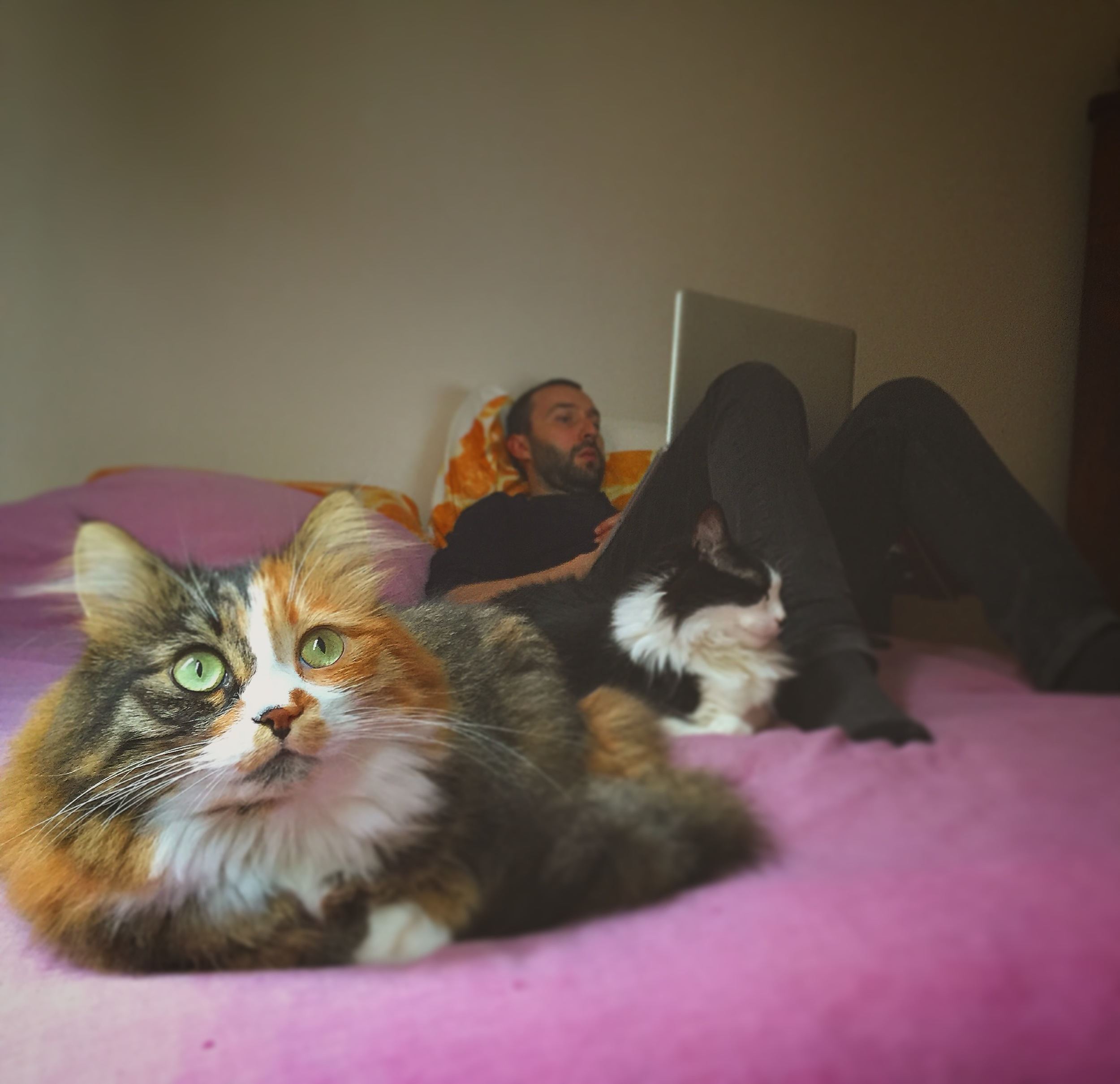 Il mio amico Emi rassicura la sua famiglia via skype mentre Màrlen e Ayshonz se la chillano.