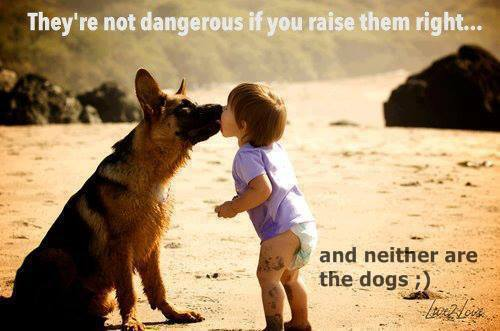 Image from: Beyond Breed ( http://beyondbreed.com/raising-them-right-and-bad-owners/ )