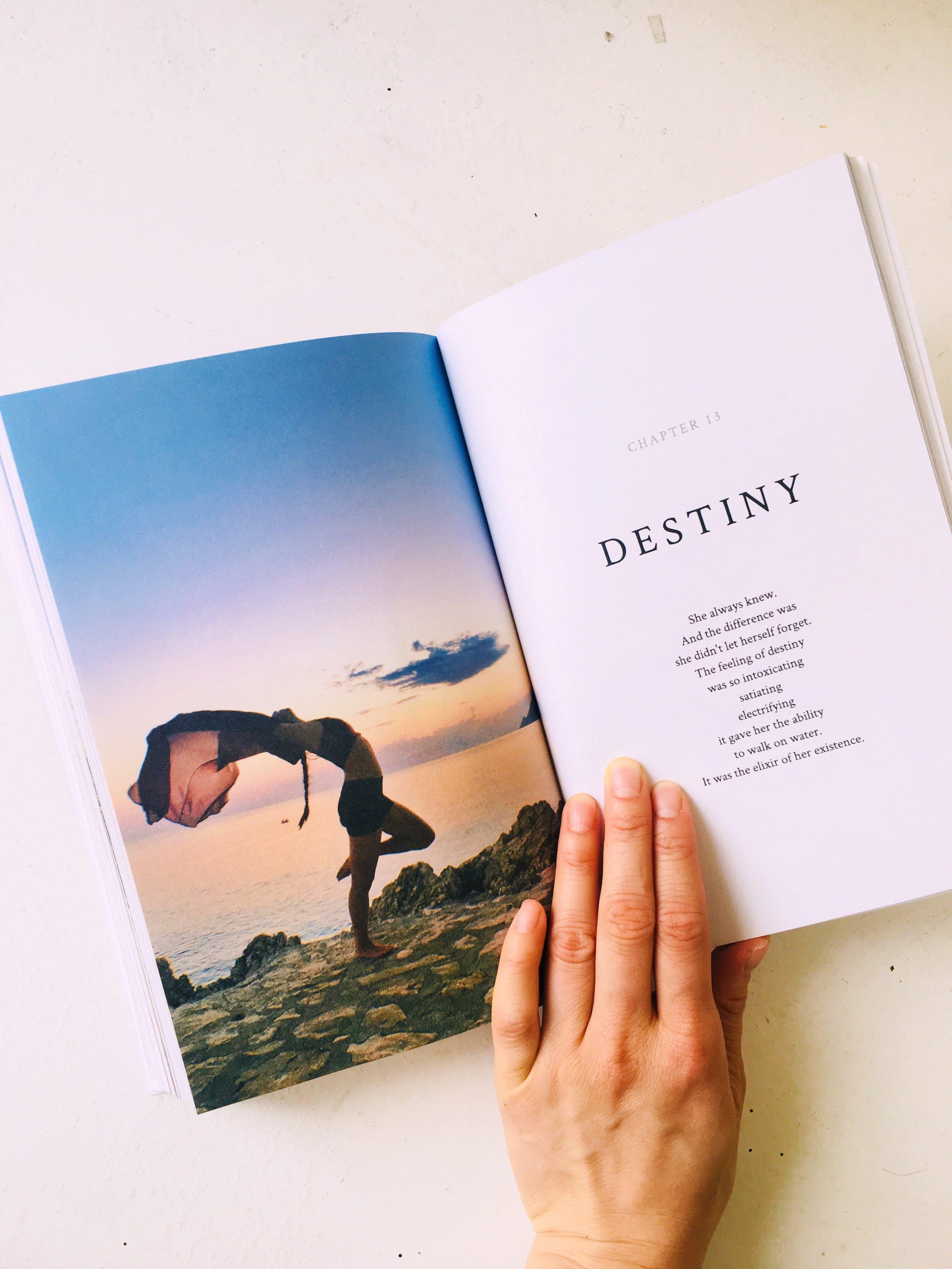 Anita Wing Lee Home Is Oceans Here Book