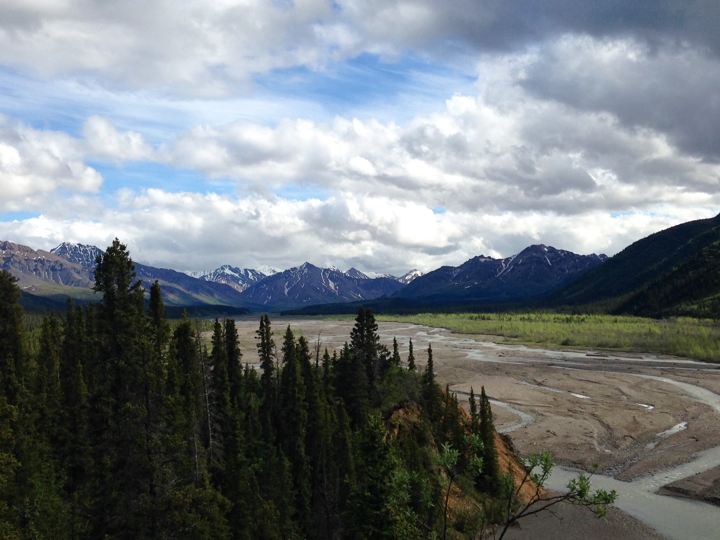 View from near the Teklanika field campus of the Teklanika river and alaska range.