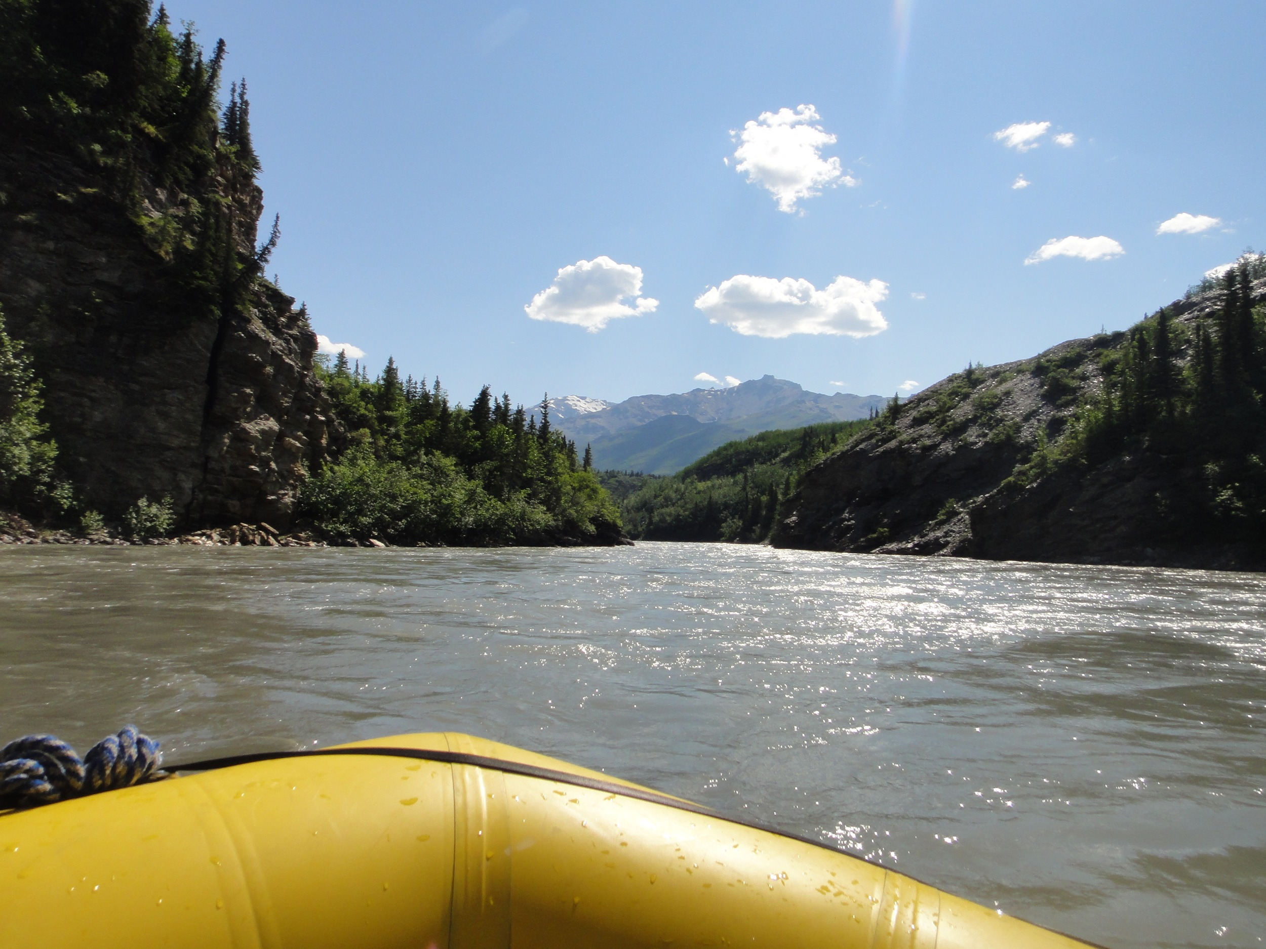 View from the raft headed down the Nenana at a calm section of the river.