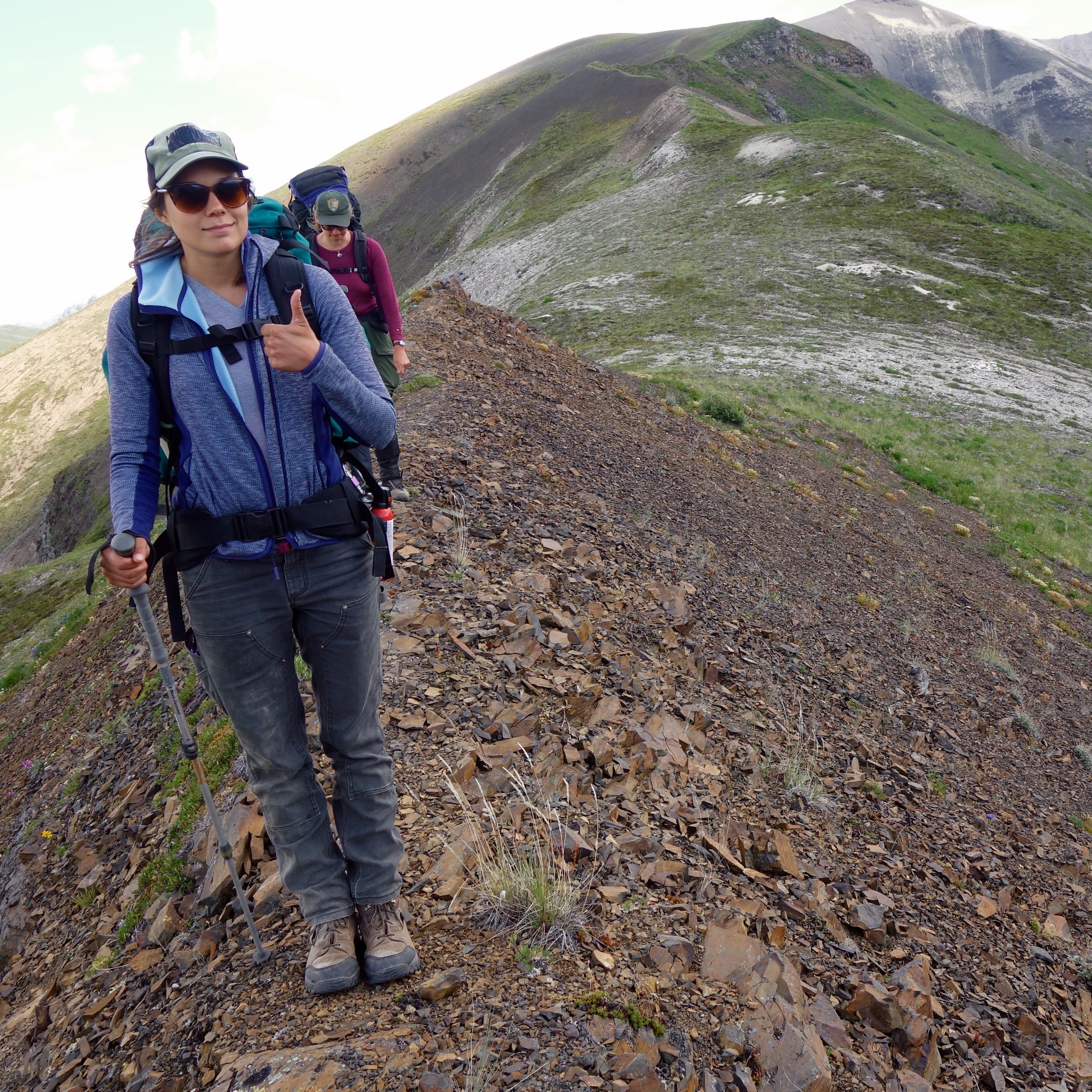 Backpacking looking for micranthes Wrangell st. elias National PArk, Alaska.