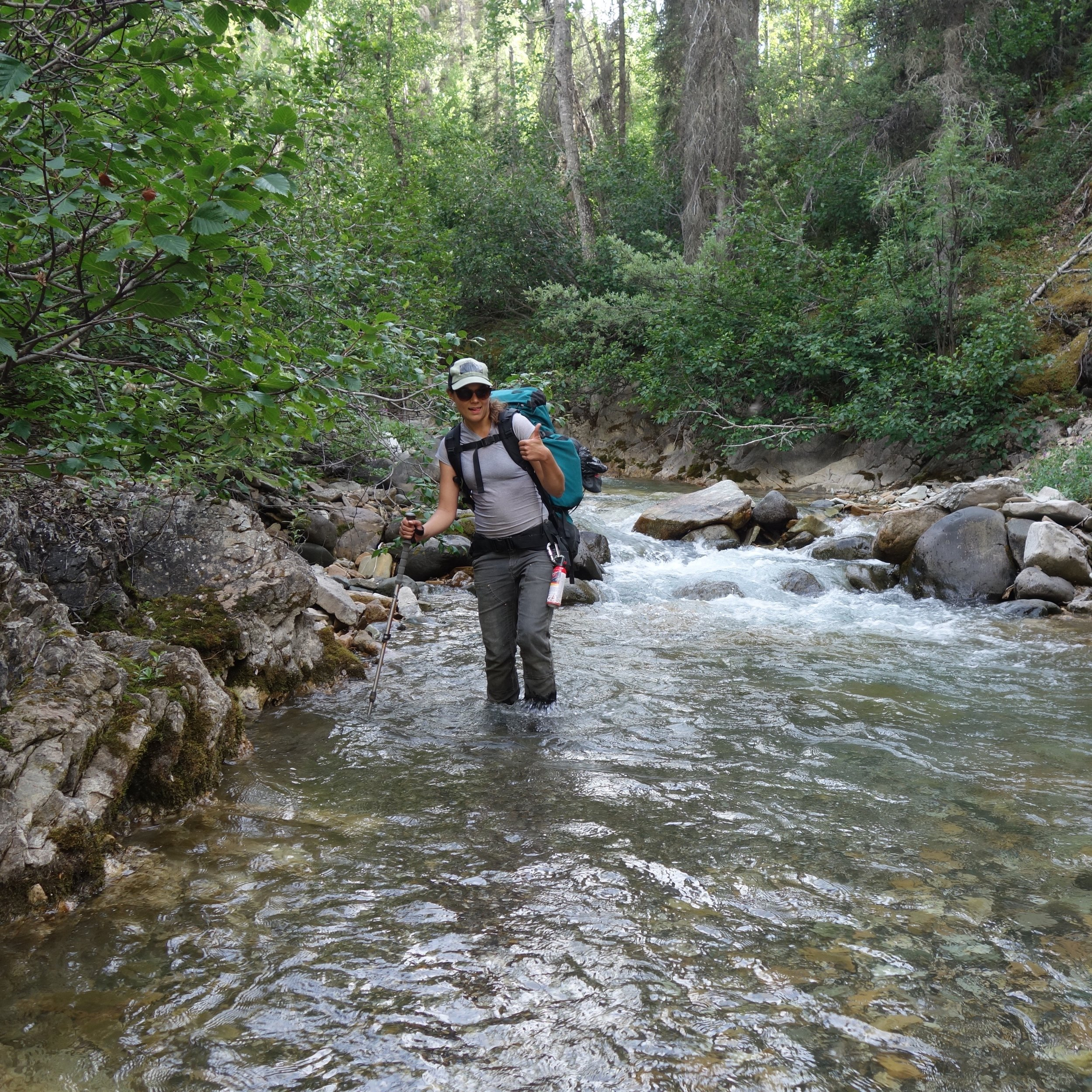 rebecca_stubbs_micranthes_backpacking_botanist