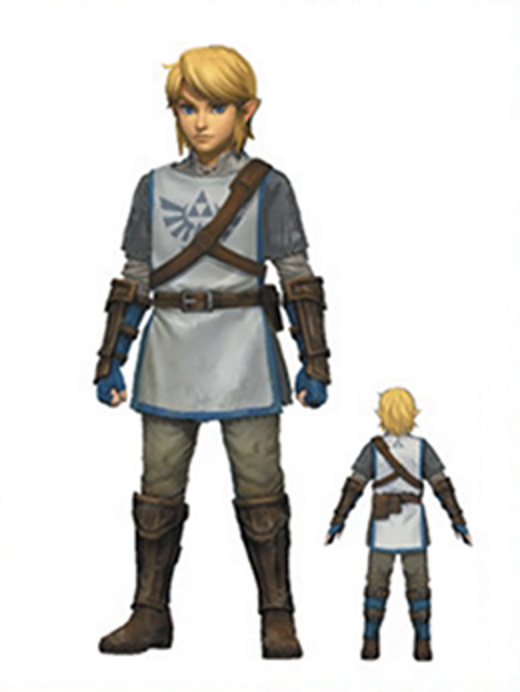 link_knight_uniform___hyrule_warriors_link_trainee_by_skilarbabcock-d81loun.png