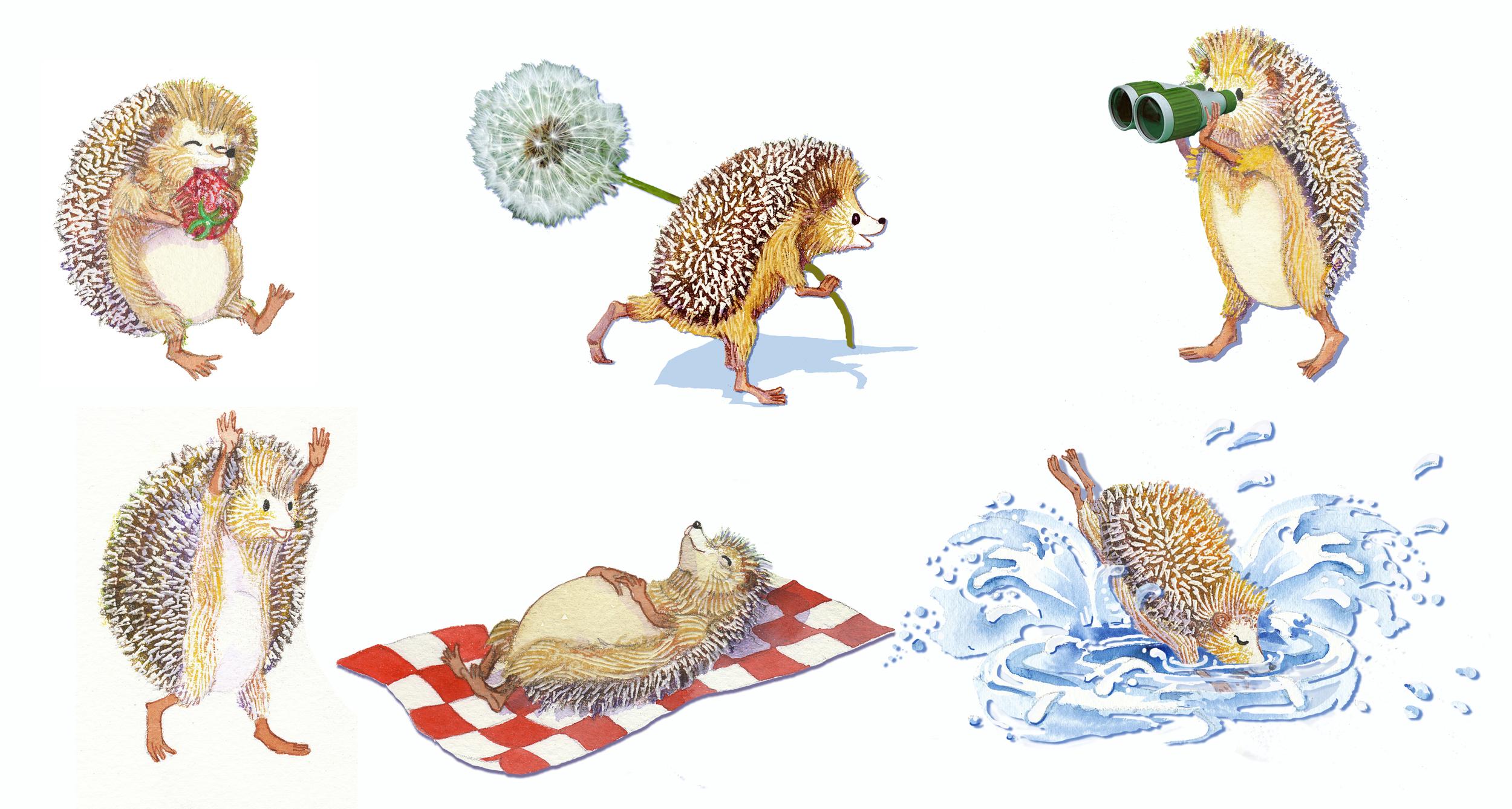Hedgehog_character.jpg