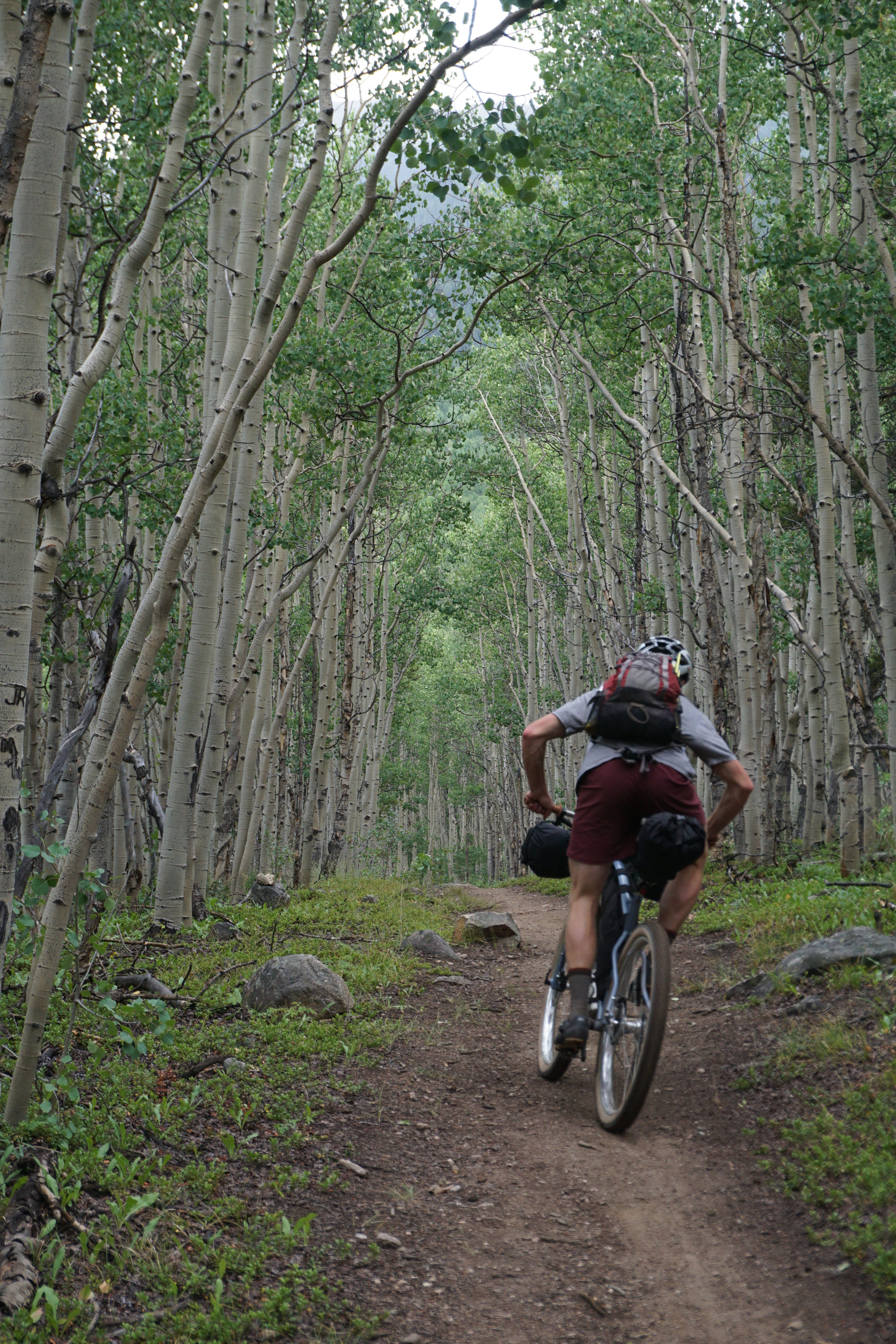 Sklar Colorado Trail (116).JPG