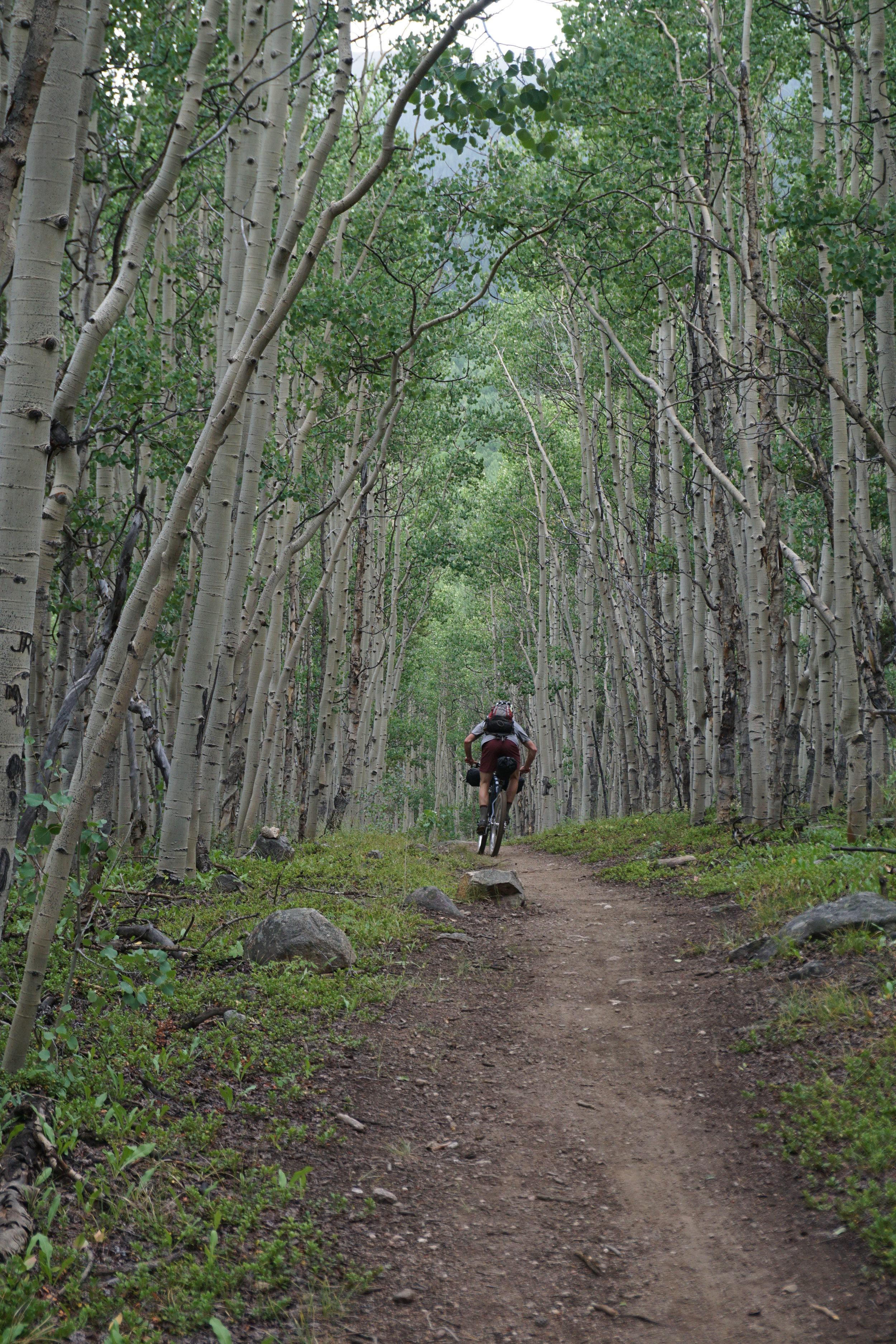 Sklar Colorado Trail (119).JPG