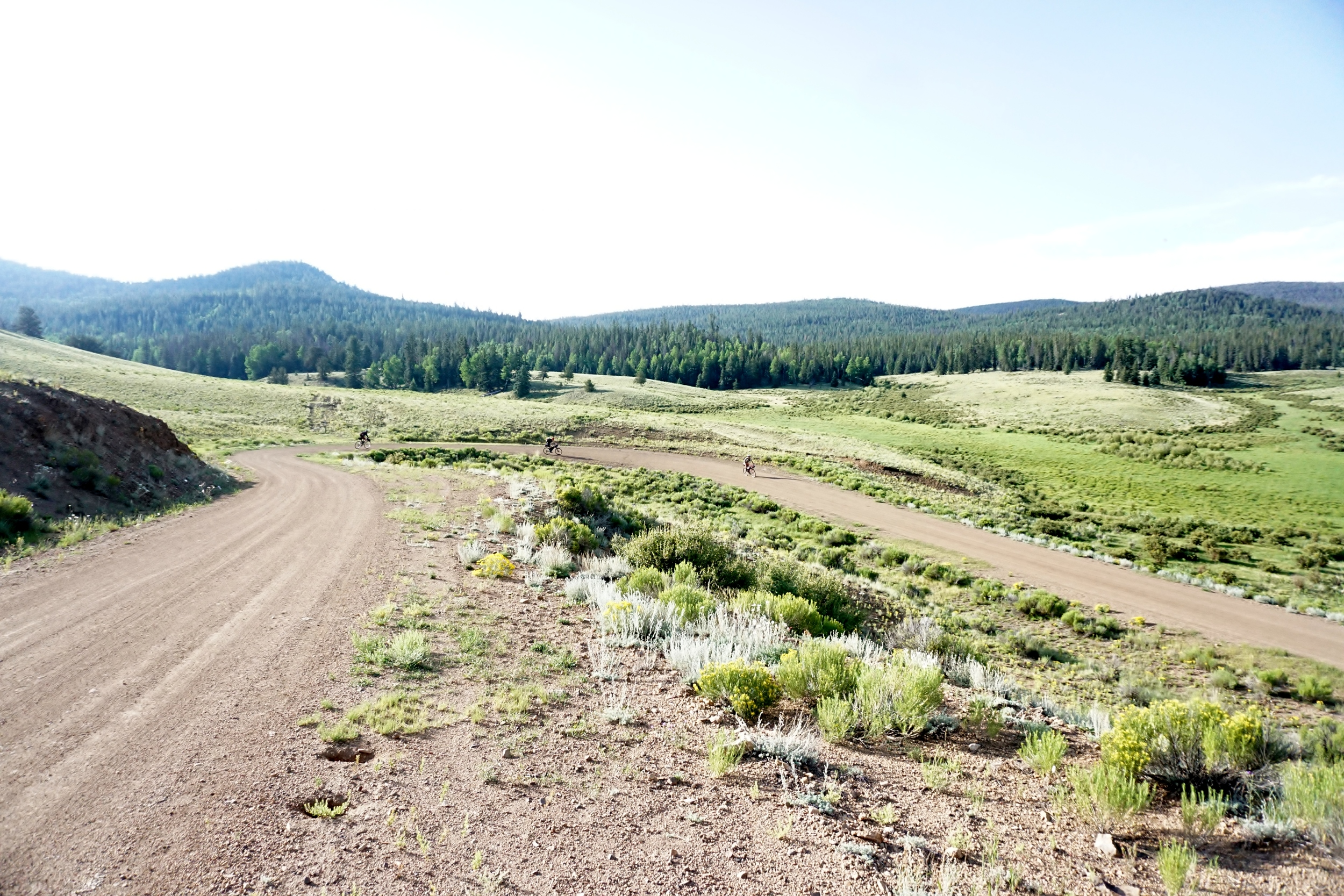 Sklar Colorado Trail (193).JPG