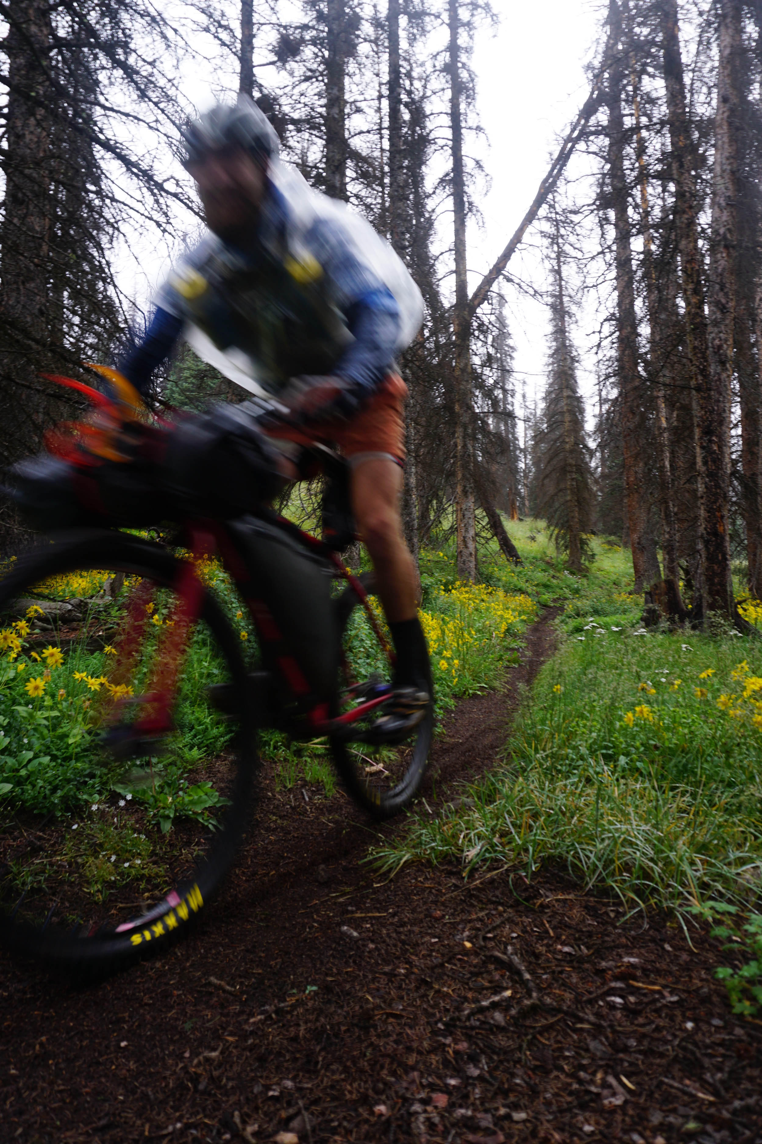 Sklar Colorado Trail (266).JPG
