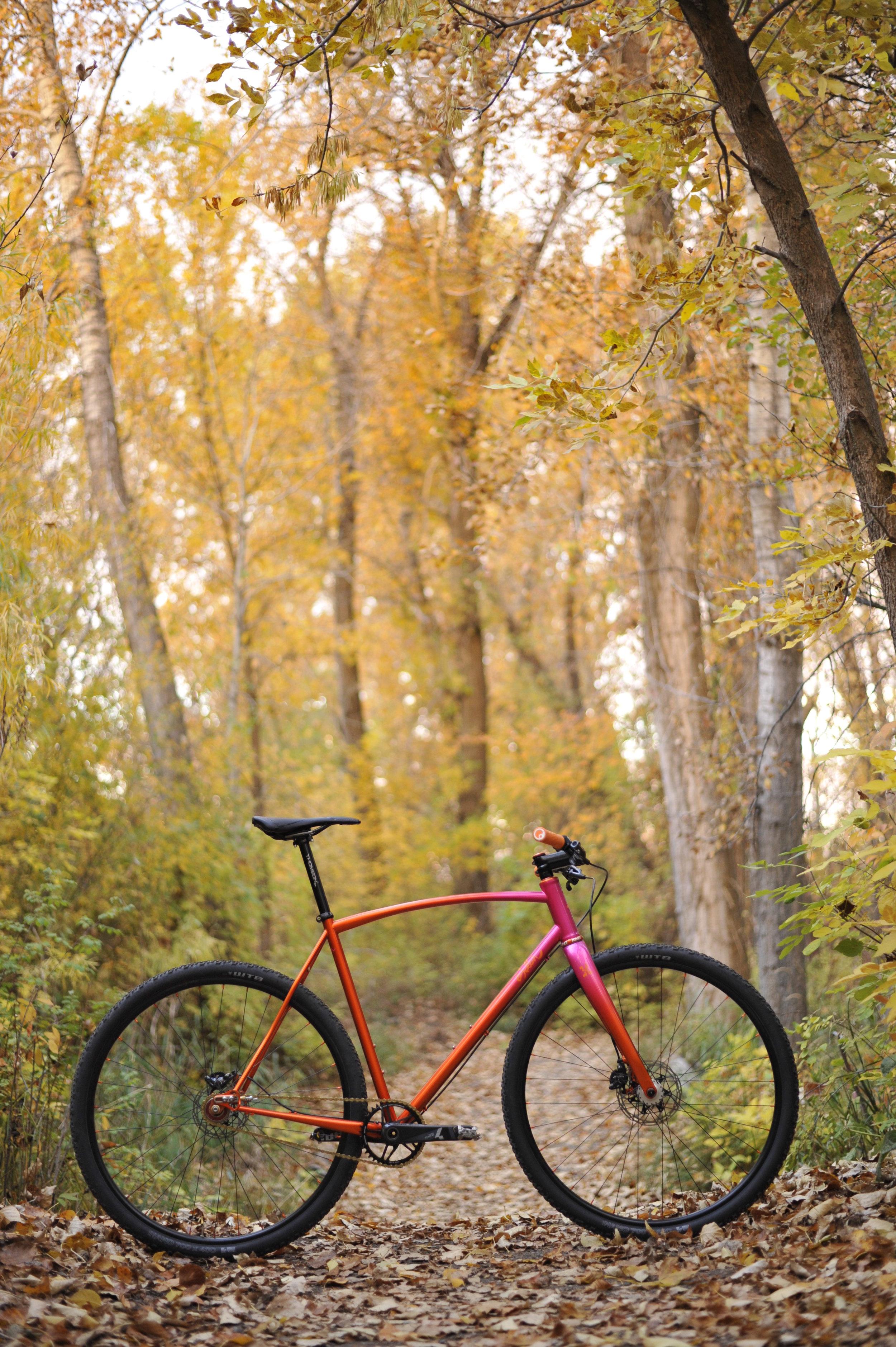 Sklar Custom Single speed cyclocross cx