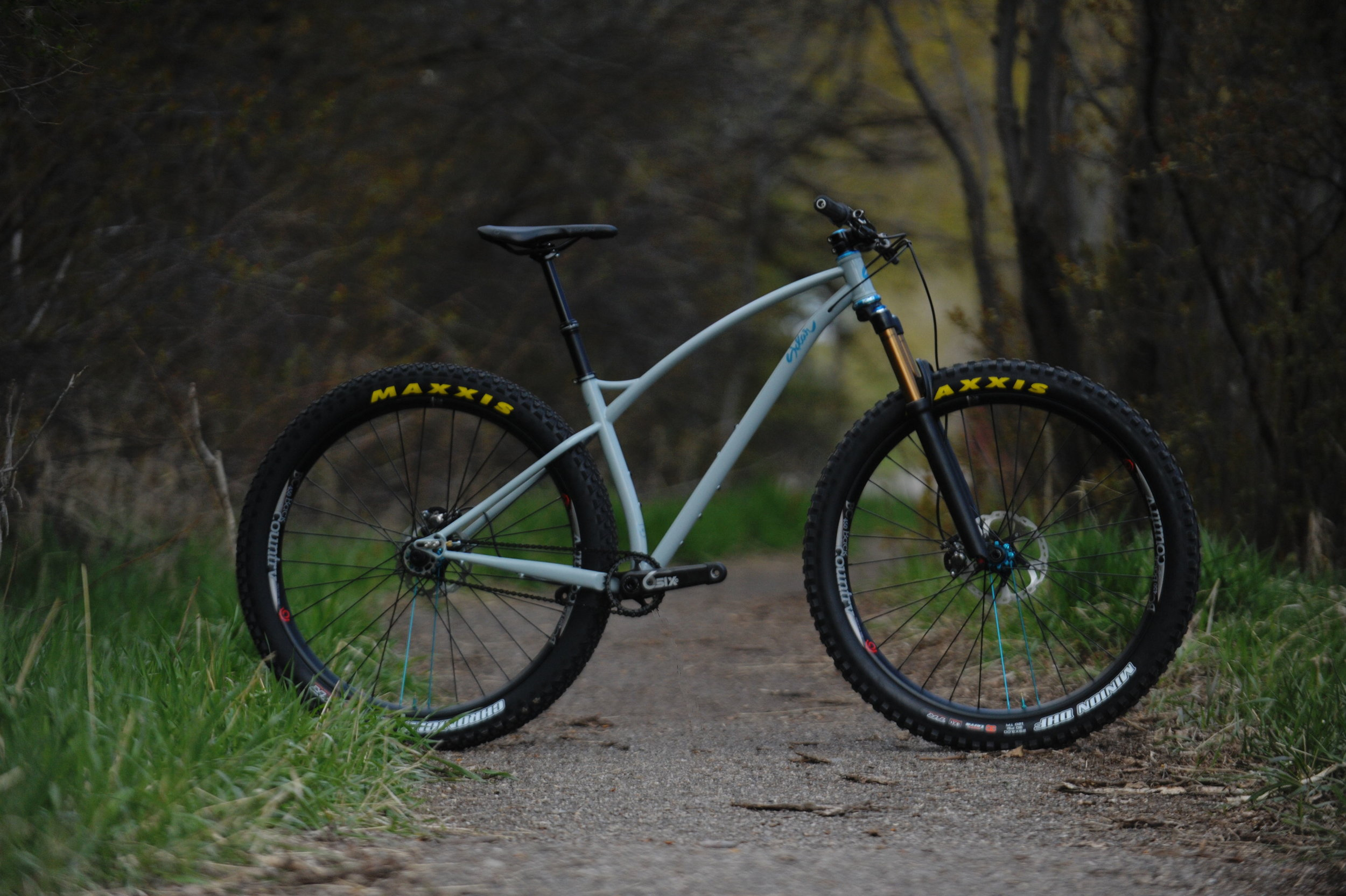 Sklar_29_plus_singlespeed_9.JPG